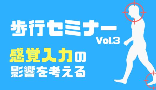 【大阪会場】感覚入力が及ぼす歩行の臨床的解釈