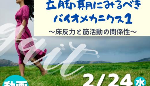 保護中: 【実技動画】2月24日参加者限定